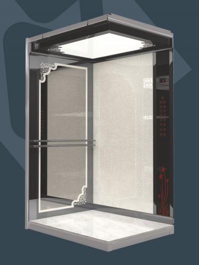 K305 Şahıs Asansörü